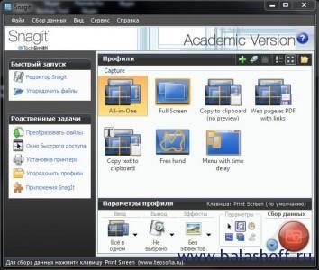 Скриншот с программой Snagit