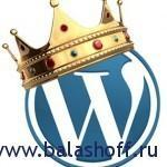 king-wordpress