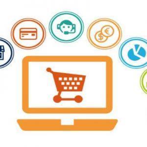 Собственный бизнес-центр состоит из интернет-магазина, собственного сервиса рассылки, онлайн-школы (иначе тренингового центра) и membership.